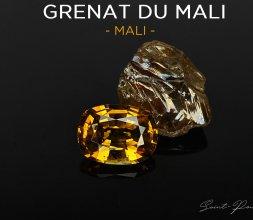 Grenat Du Mali