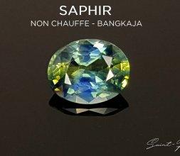Saphir Polychrome