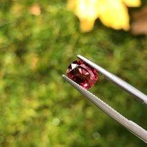 Quoi d'aussi beau qu'un rubis si ce n'en est pas un
