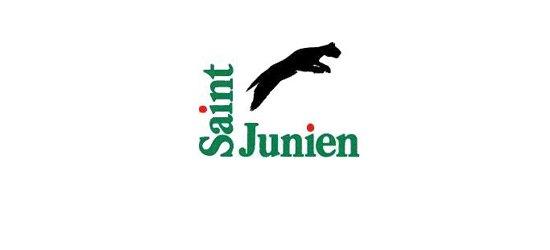 Ville de Saint Junien